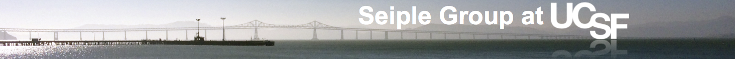 cropped-cropped-ucsf-seiple-header-b2.png